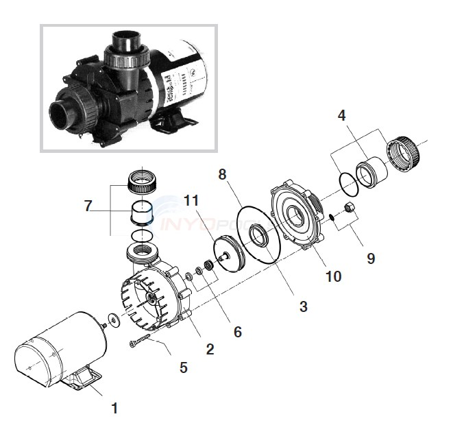 Speck Model E75 Spa Pump Diagram