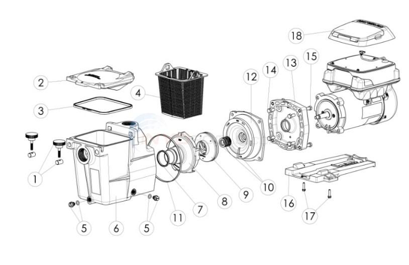 Wiring Diagram: 29 Hayward Super Pump Parts Diagram