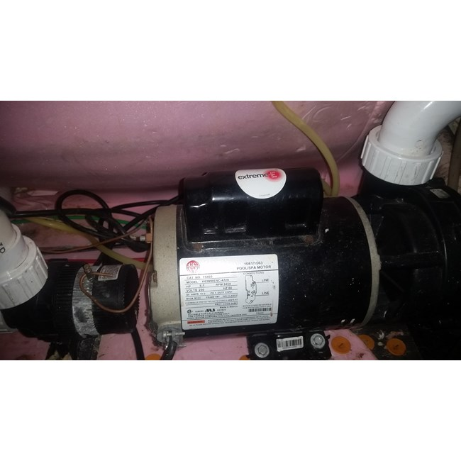 PureLine 2 H.P Pool Motor Square Flange 56Y Up Rate (Out of Stock) - B859