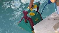 Pool Cleaner Dolphin
