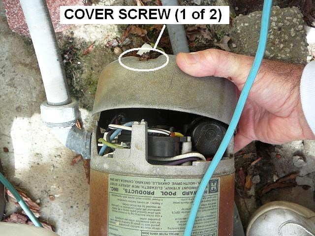 replace ee pool pump motor