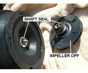 How To Replace The Motor On Your Pool Pump Inyopools Com