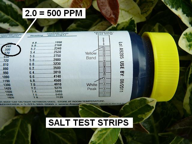 pool salt water test strip