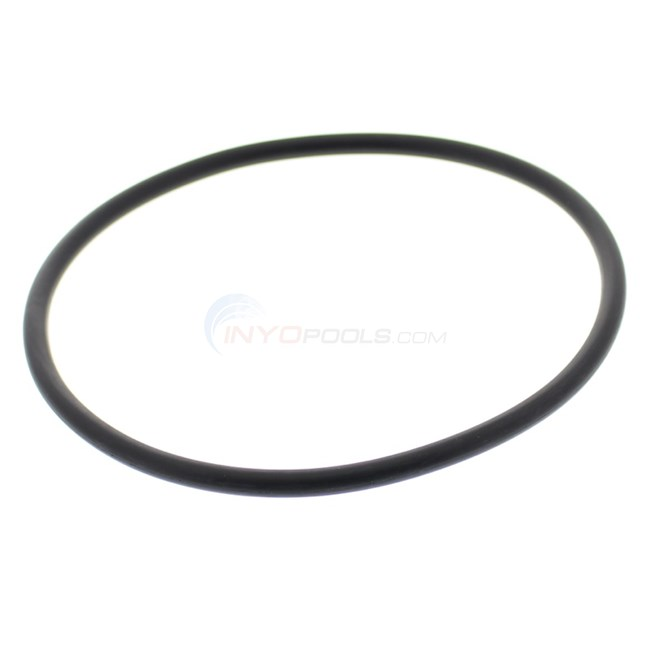 Lid O-ring for Pentair Whisperflo (350013) - O-318