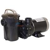 Spa Pump Parts